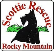 Rocky Mountain Scottie Rescue | Colorado